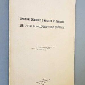 CONDIZIONI GEOLOGICHE E MINERARIE DEL TERRITORIO ASFALTIFERO DI COLLEPARDO-TRISULTI (FROSINONE)