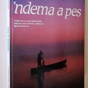 'NDEMA A PES – I pesci delle acque mantovane spiegati, visti, sofferti, imprecati, messi in padella
